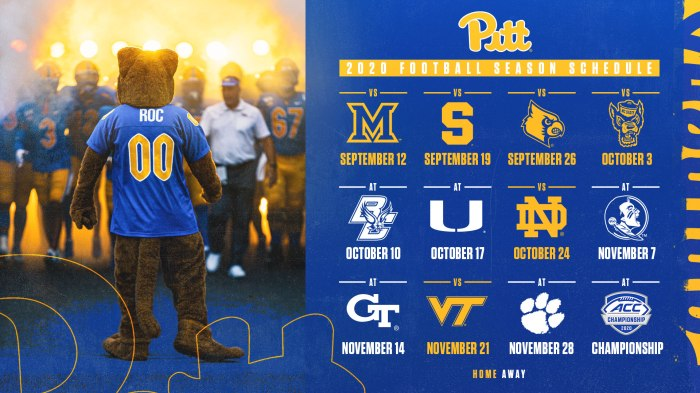 Pitt 2021 Schedule